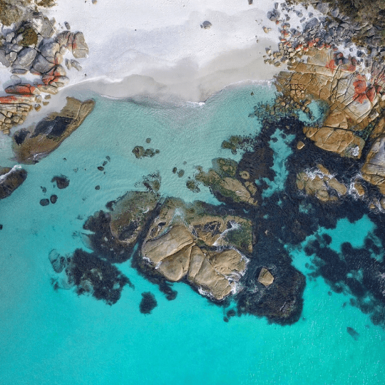 Ariel view of the coast line with beautiful blue water. Corner (North or South), Bay of Fires TAS -  The North and South sides offer plenty of white sandy beach and crystal clear turquoise water for swimming and diving. You can even score some waves if there's some.